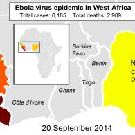 Ebola updated