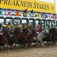 Triple Crown hopeful at the Preakness Stakes